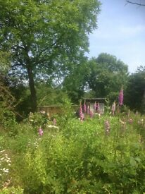 Plot of land for sale. Garden retreat. Agricultural. Cotswolds.