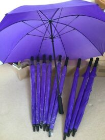 Umbrellas, 10 matching, purple, unused,