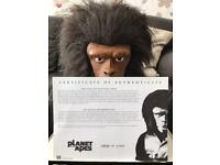 Planet of the Apes bust