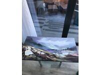 Next Art canvas in VGC
