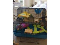 Huge hamster cage + accessories in great condition £30