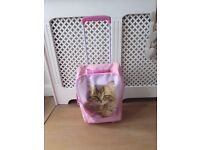 Girls pink wheeled suitcase cat