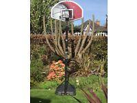 Basketball hoope