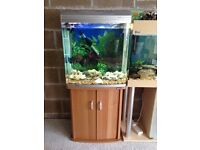 130l fish tank full set up ander 1 year old with filter heater 2 light stand gravel ornament