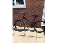 "Ladies muddy fox mountain bike 17"" frame brand new good reason for sale"