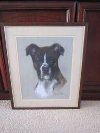 Original Pastel of Brindle Boxer Dog.