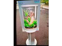 Price reduction - Biorb Tube 30 litre White led fish tank
