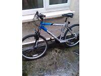 Bike for a man