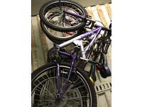 Men's and woman's mountain bikes