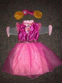 Paw Patrol Skye & Fairy fancy dress