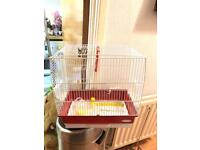 Small budgie cage