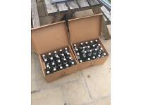 Grolsch bottles X 40