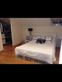 Beautiful Large Double room available in Chrisrchurch