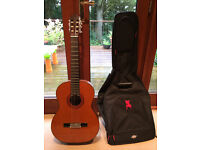 Farida Acoustic Guitar + Bag, pick and capo