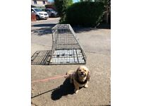 Trystorme custom dog transport crate cage for car or small van