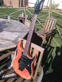 Awesome WASHBURN MG-40 Electric Guitar with custom painted body