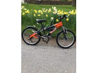 Raleigh Triumph Viper 20 Bike (7-10 year olds) - £55 ONO.