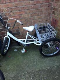 Ladies/Child's trike