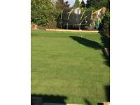 Top quality lawn turf from Lincolnshire fresh cut daily