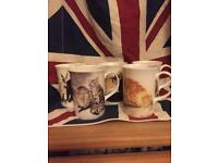 5 Collectable Bone China Cat Cups