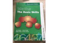 Maths the basic skills curriculum edition