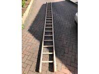 Builders wooden ladder, 20 rung, round treads, half round sides