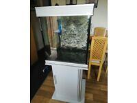 Aqua One fish tank and cabinet
