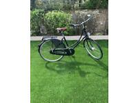 Pashley Princess Sovereign (5 speed) with Basil panniers