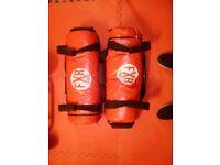 Pair 20kg Power Bags