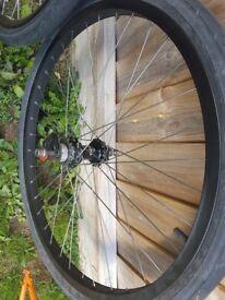 Hope singlespeed wheelset