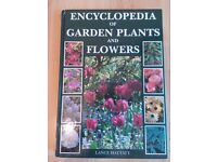 Encyclopedia of Garden Plants and Flowers - Lance Hattatt Hardback