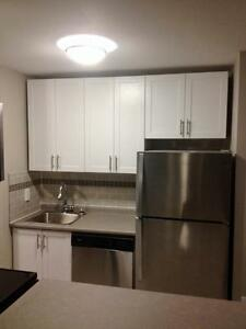 Modern & Newly Renovated 1 Bedroom Suites with Waterfront Views Sarnia Sarnia Area image 7