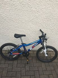 Ridgeback MX20 kids bike