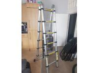 3.8m Telescopic Ladder