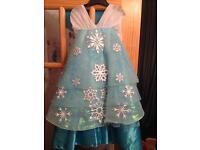 Disneys Luxury Elsa dress