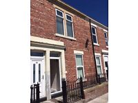 Lovely 1 bed Flat, Sceptre Street, Arthurs Hill, Newcastle, NE4 6PR with off-street parking