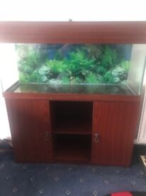 Fish tank and cupboard space