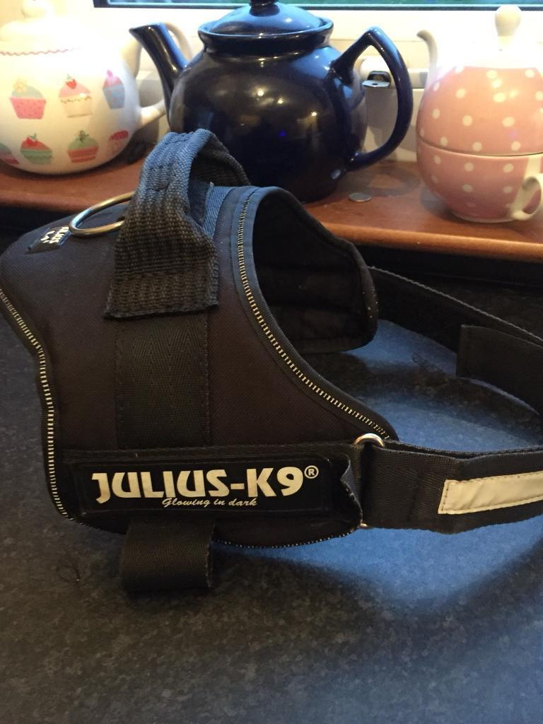 Julius Dog Harness