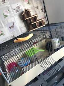 Large hamster / rat / mouse / dwarf hamster cage