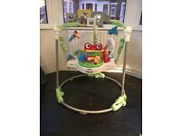 Baby Rainforest Jumperoo - great condition