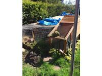 Chicken coup and run