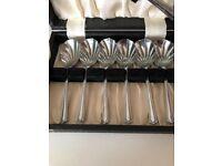 Vintage unused boxed dessert spoons & server