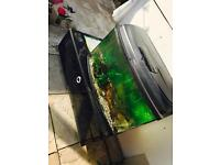 Fish tank with accessories for sale