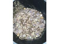 Slate Chippings / small stones