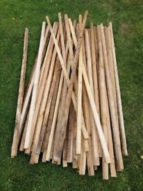 4ft stakes