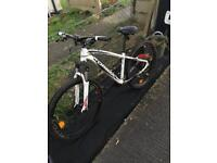 Mountain pushbike mens