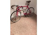 Viva Pista Fixed Gear Bike