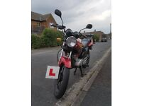 honley hd1 125cc learner legal