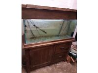 200L Fish Tank in a Solid Oak Cabinet - Great Condition
