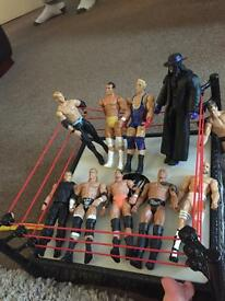 30 WWE wrestlers plus elimination chamber ring